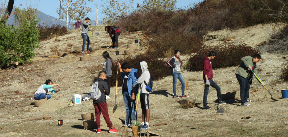 Peck Water Conservation Park Group Volunteers