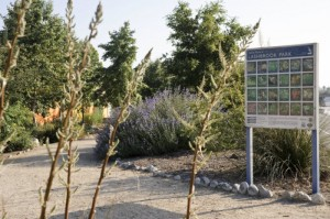 Lashbrook Plant Palette Signage on Trail