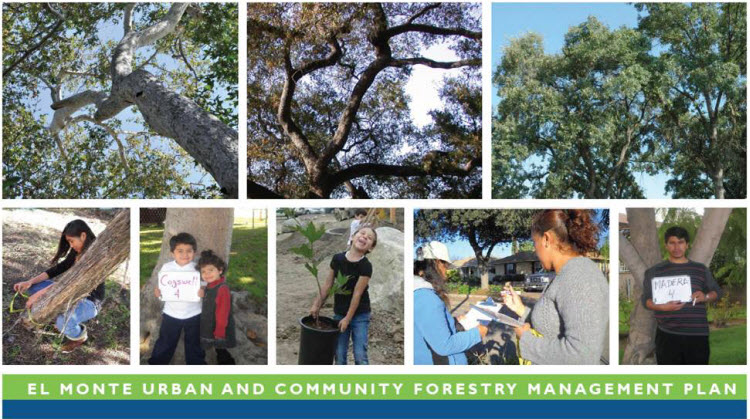 Urban Forestry - City of El Monte