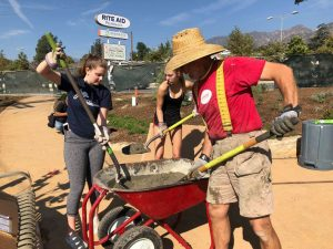 Volunteer Work in Altadena Triangle Park