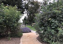 Hollydale Park