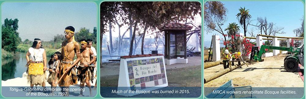 history of Bosque del Rio Hondo