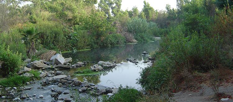 Rio Hondo River along trail at the Bosque del Rio Hondo